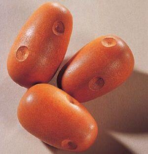 HABA Kaufladen Kartoffeln Haba;1397