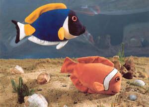 Kösen Anemonenfisch 15cm 4040