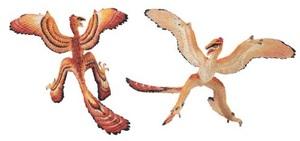 SAFARI CARNEGIE Microraptor 1:5 18 x 9.5 cm 7804050