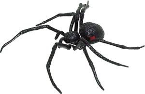 Spinne schwarz 43370014