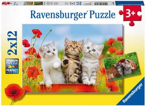 Ravensburger Puzzle Katzen auf Entde- ckungsreise, 2x12 Teile, 26x18 cm, ab 3 Jahren 60007626
