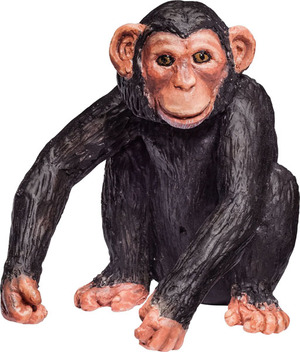 Ravensburger Ravensburger Tiptoi Schimpansen Junges, S Spielfigur Afrika, 2.9x3x2.6 cm, exkl. Stift 3655A1