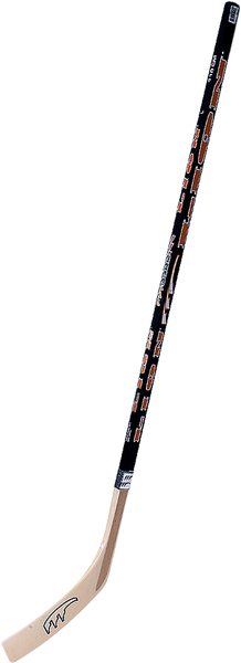 Hockeystock Junior, 115 cm gebogene Schaufel Holz/Kunststoff, Lion 74038322