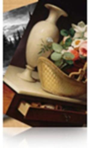 EPSON S042134 Premium luster Foto Papier inkjet 260g/m2 1524mm x 30.5m 1 Rolle 1er-Pack S042134