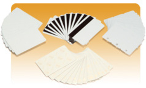 ZEBRA PVC Karten Weiss 500 Karten 104523-010