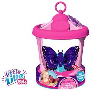 BO Schmetterling mit Haus ass. 4333258