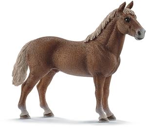 Schleich Morgan Horse Hengst 2029