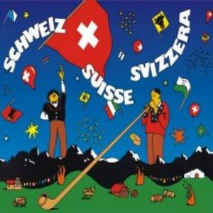 TB Schweiz (0538) 26cm 88021267